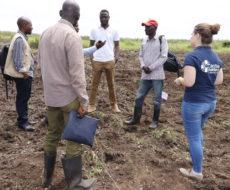 Visite des champs écoles paysannes par VERA, superviseur du projet santé-nutrition à Action Medeor